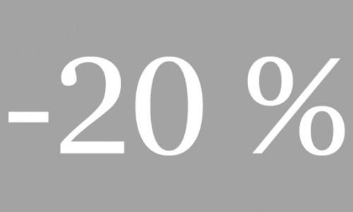 -20% georgia